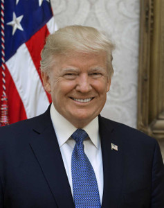 Art prints of Donald Trump, Presidential Portraits