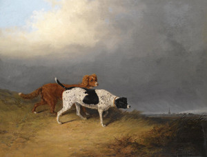 Art Prints of Pointer and Setter at Lydney Park by Abraham Cooper
