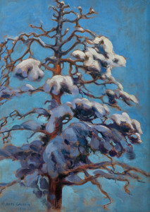 Art Prints of Snowy Pine by Akseli Gallen-Kallela