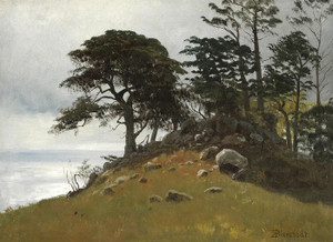 Art Prints of Cypress Point Monterey by Albert Bierstadt