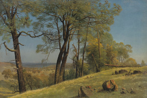 Art Prints of Rockland County California by Albert Bierstadt