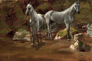 Art Prints of Study of Wild Horses by Albert Bierstadt