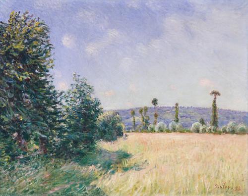 Art Prints of Sahurs Meadows in Morning Sun by Alfred Sisley