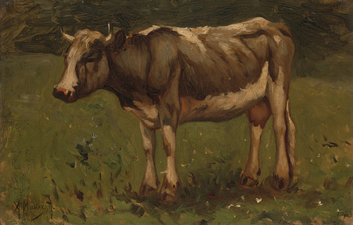 Art Prints of A Cow in a Meadow by Anton Mauve