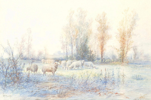 Art Prints of Flock of Sheep in a Field by Anton Mauve