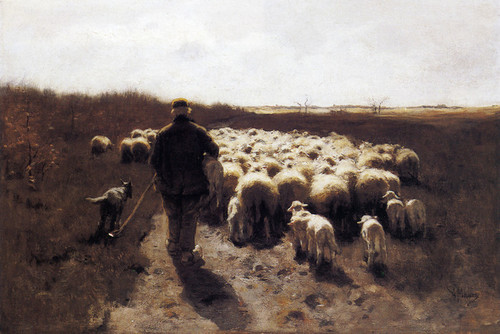 Art Prints of Return of the Flock by Anton Mauve