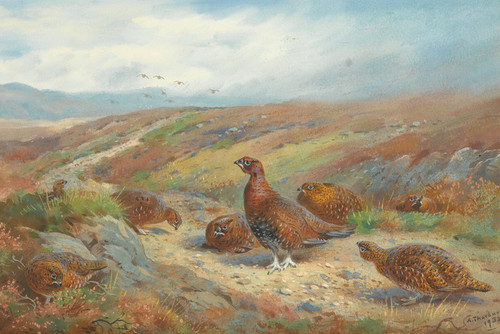 Art Prints of The Old Drove Road by Archibald Thorburn