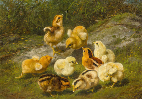 Art Prints of Nine Chicks and Leaf by Arthur Fitzwilliam Tait
