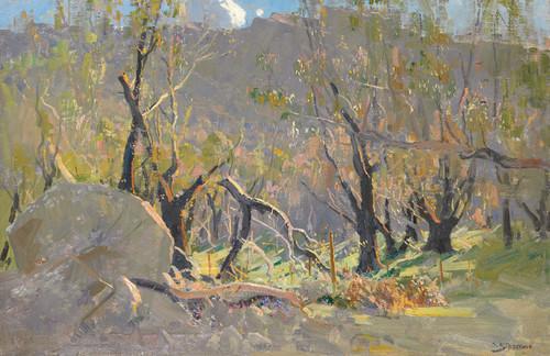 Art Prints of Grampians Landscape by Arthur Streeton