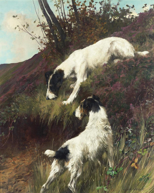 Art Prints of Anticipation II by Arthur Wardle