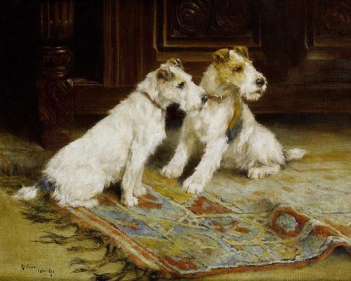 Art Prints of Anticipation by Arthur Wardle