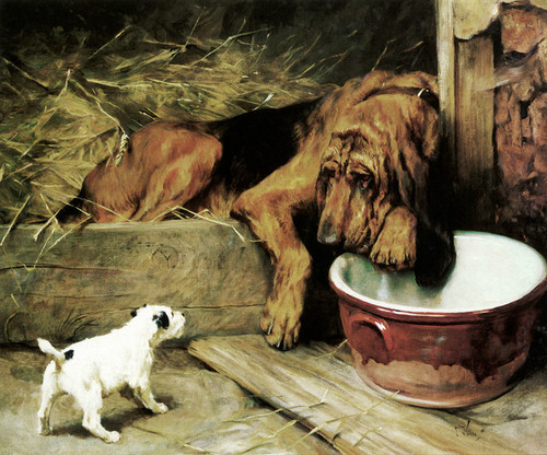Art Prints of Dignity and Impudence by Arthur Wardle
