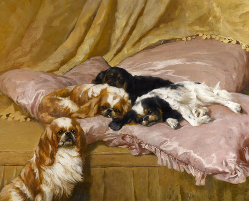 Art Prints of My Lady's Pets, Toy Spaniels by Arthur Wardle