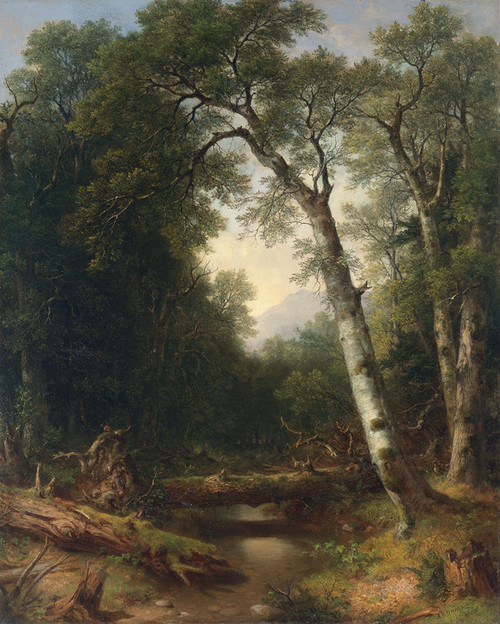 Art Prints of A Creek in the Woods by Asher Brown Durand