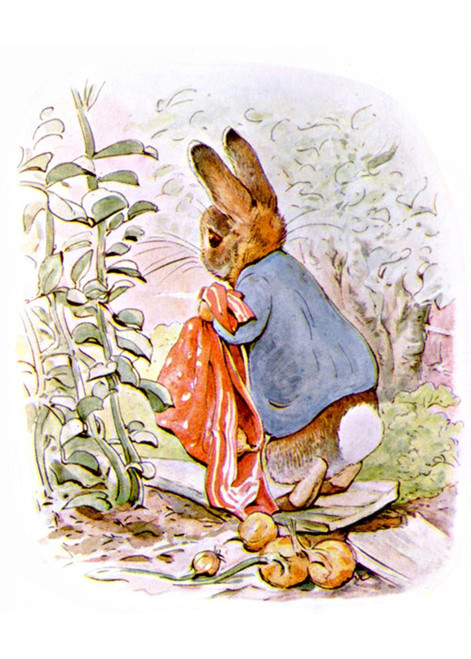 Art Prints of Dropping Onions by Beatrix Potter
