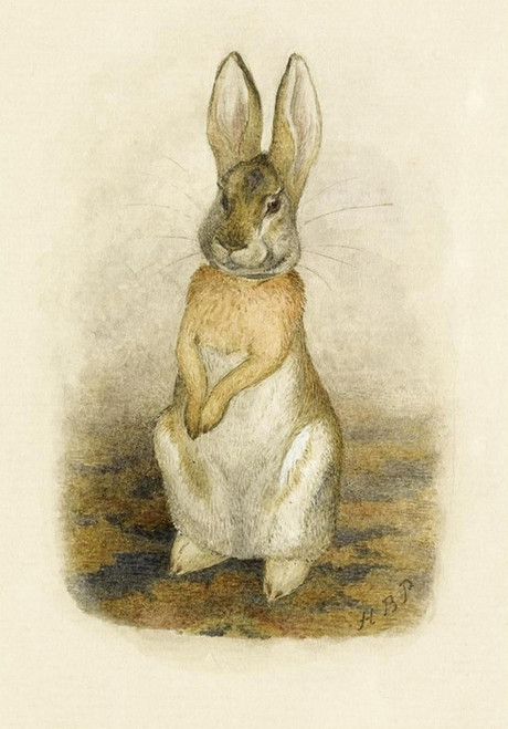 Art Prints of Hare Sitting on a Patterned Carpet by Beatrix Potter