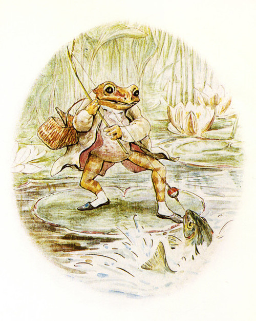 Art Prints of Jeremy Reels in a Fish by Beatrix Potter