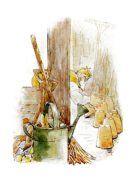 Art Prints of McGregor Looks Under Pots for Peter by Beatrix Potter