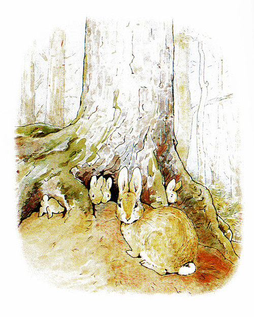 Art Prints of Four Little Rabbits Lived with their Mother by Beatrix Potter