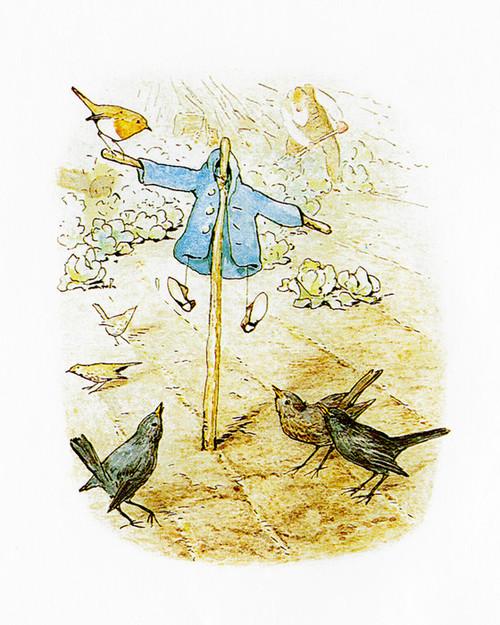 Art Prints of Scarecrow & Blackbirds by Beatrix Potter
