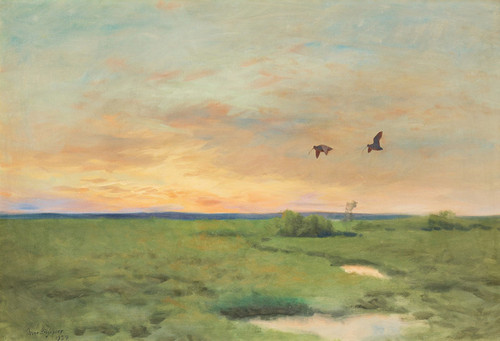Art Prints of Curlew by Bruno Liljefors