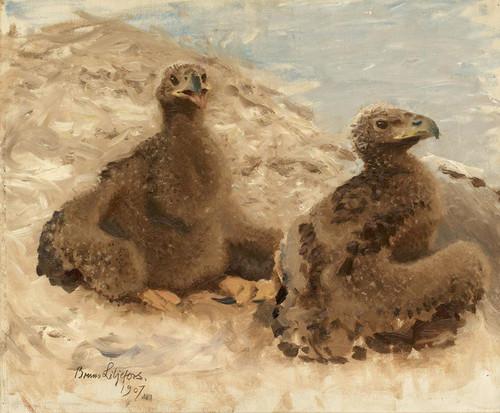Art Prints of Eaglets by Bruno Liljefors