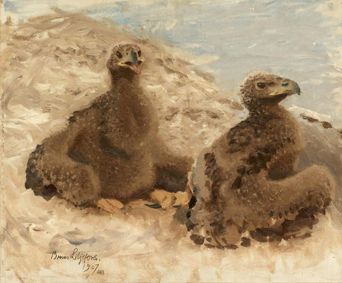 Art Prints of Eaglets by Bruno Liljefors