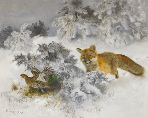 Art Prints of Fox and Black Grouse Hen in Winter Landscape by Bruno Liljefors