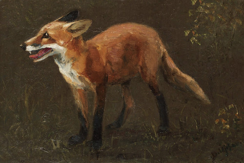Art Prints of Fox Cub by Bruno Liljefors