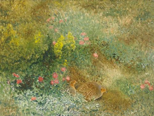 Art Prints of Grey Partridges by Bruno Liljefors