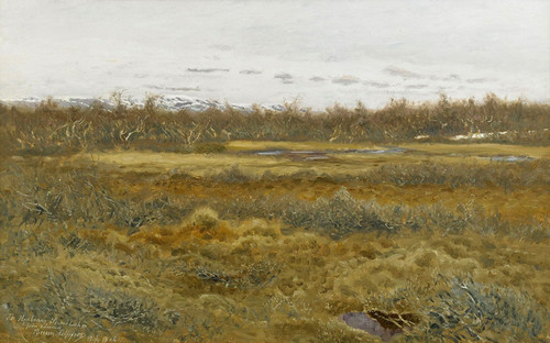 Art Prints of Landscape with Fell by Bruno Liljefors