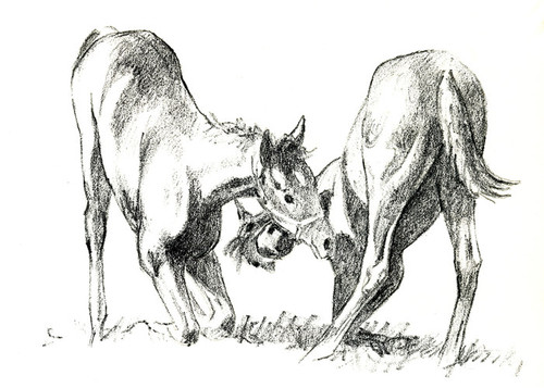 Art Prints of Full of Themselves or Horsing Around by C.W. Anderson