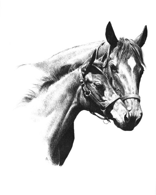 Art Prints of The Great Mare Busher with Her First Foal by C.W. Anderson