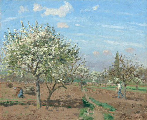 Art Prints of Orchard in Bloom, Louveciennes by Camille Pissarro
