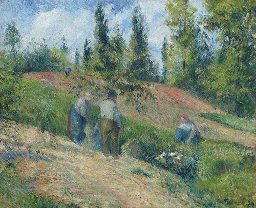 Art Prints of The Harvest by Camille Pissarro