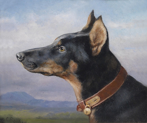 Art Prints of Portrait of a Doberman by Carl Reichert