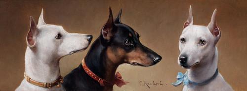 Art Prints of Terrier Head Studies by Carl Reichert
