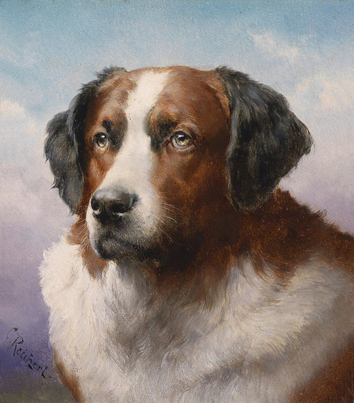 Art Prints of St. Bernard by Carl Reichert
