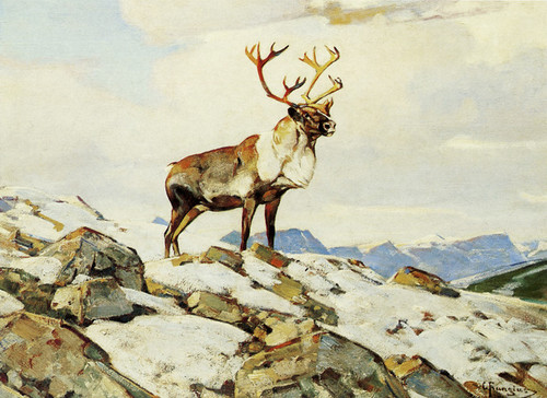 Art Prints of Caribou by Carl Rungius