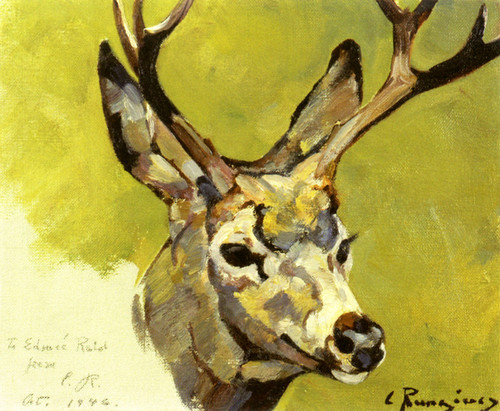 Art Prints of Deer Head by Carl Rungius