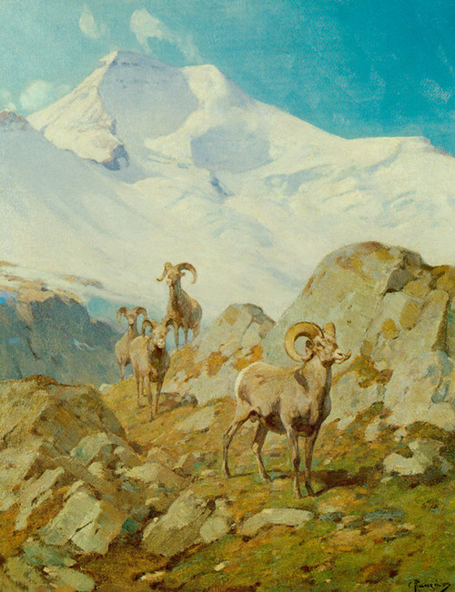 Art Prints of Four Mountaineers by Carl Rungius