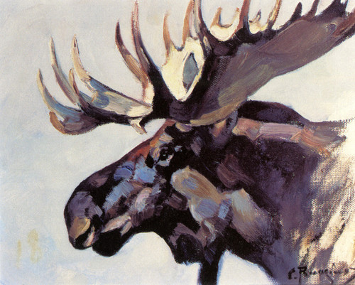 Art Prints of Moose Head by Carl Rungius