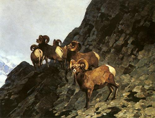 Art Prints of Rams by Carl Rungius