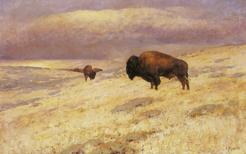Art Prints of The Last of the Herd by Carl Rungius