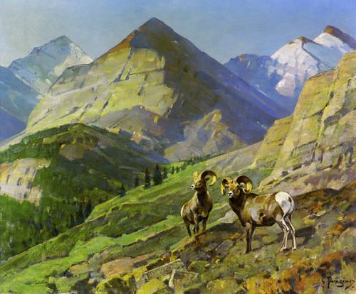 Art Prints of Two Mountain Sheep by Carl Rungius