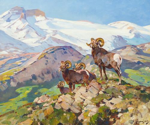Art Prints of Big Horns by Carl Rungius