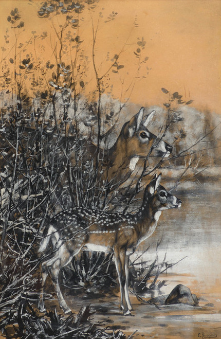 Art Prints of The Spotted Fawn by Carl Rungius