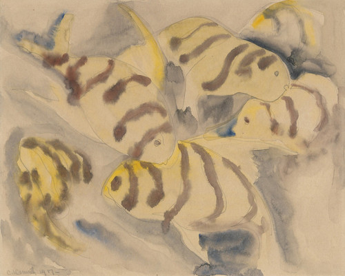 Art Prints of Fish Series No. 3 by Charles Demuth