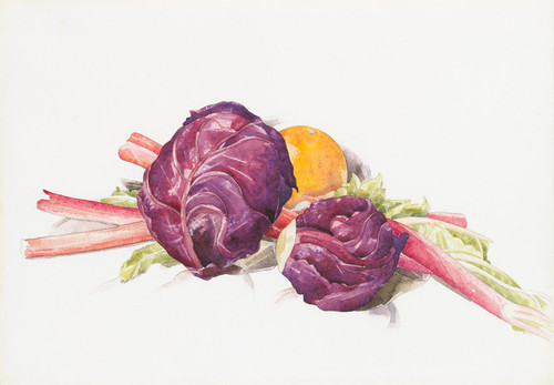 Art Prints of Red Cabbages, Rhubarb and Orange by Charles Demuth