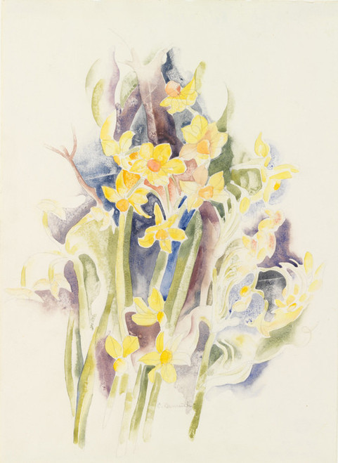 Art Prints of Small Daffodils by Charles Demuth